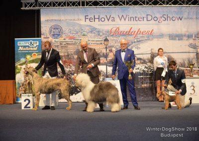 Dogshow Budapest5
